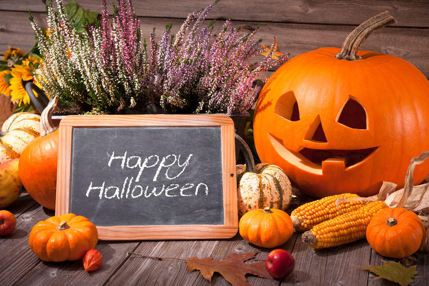 Halloween still life with pumpkins and Halloween holiday text